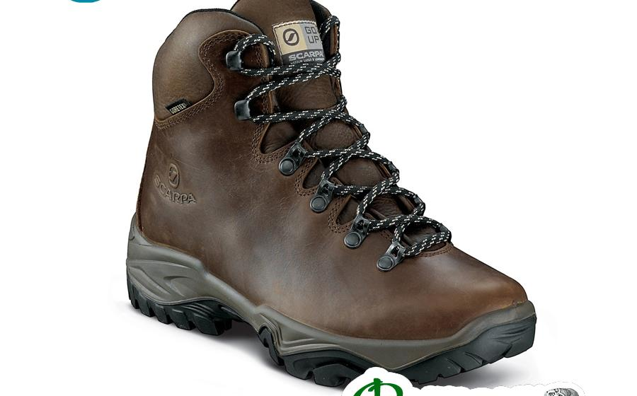 Ботинки Scarpa TERRA GTX brown