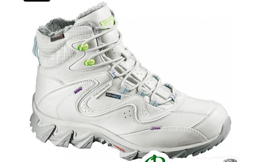 Ботинки женские Salomon SOKUYI WP titanium/green