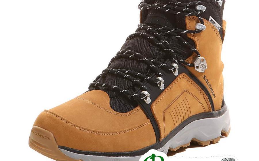 Ботинки Salomon SWITCH 2 WP darksand/black
